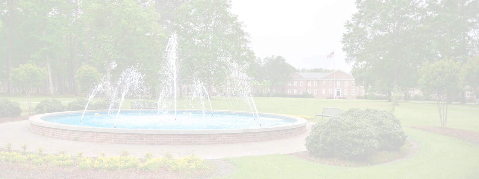 ncwc faded fountain