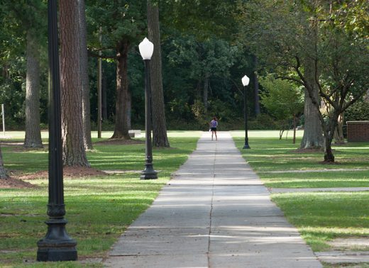 campus walkway with pleasant light posts and pine trees shading the path