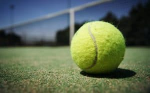 Scenic picture of green tennis ball lying on a court
