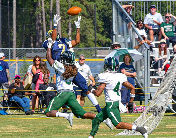 Irvin Football Catch